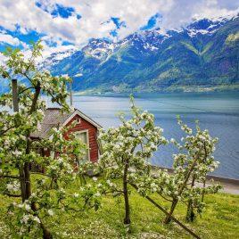 Rondreis Hoogtepunten van Noorwegen