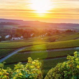 Busreis Belgische Ardennen, Champagnestreek&Reims – Oad busreizen